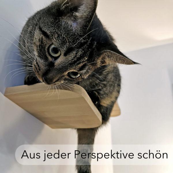 Katzentreppe haltlos schön stilvoll modern Katzentreppe
